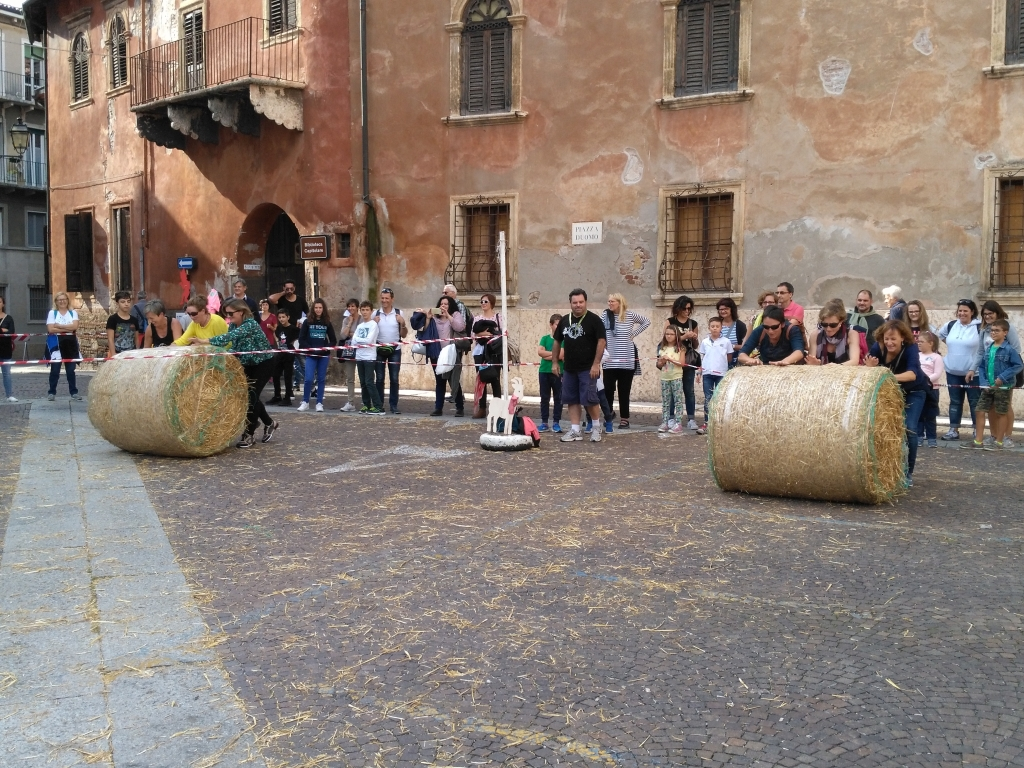 gra tradycyjna - sburla la roda2