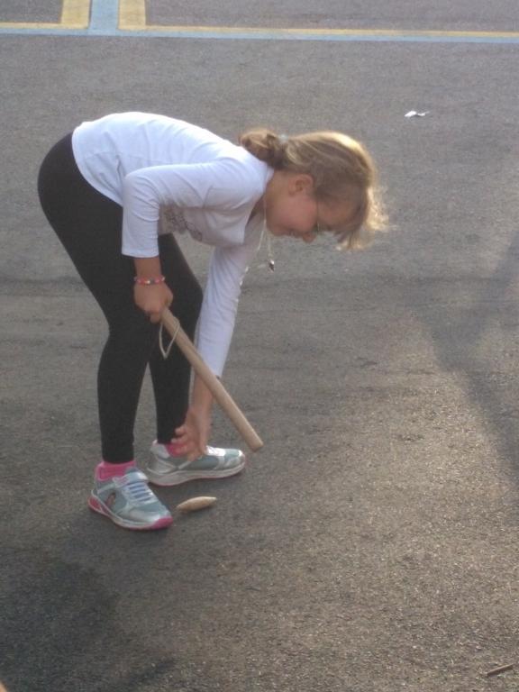 sport tradycyjny - Lippa